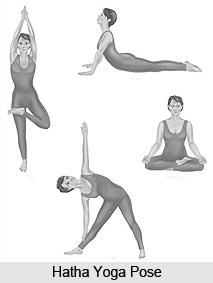Cette image a un attribut alt vide; le nom du fichier est 2_hatha_yoga_pose.jpg